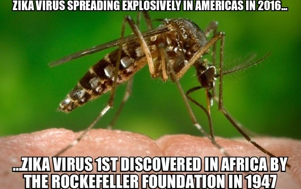 10 Shocking Reasons Why Zika Virus Fear is Another Fraudulent Medical Hoax and Vaccine Industry Funding Scam | Stillness in the Storm