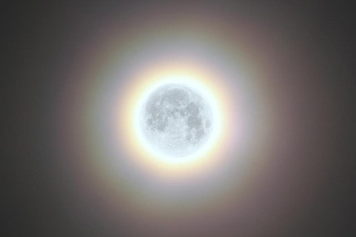 June 20th's Full Moon + Summer Solstice is a Once-in-a-Lifetime Event – Evolve + Ascend | Evolve + Ascend