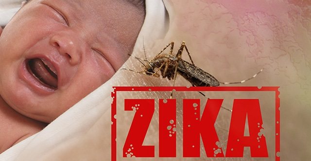 Brazil Admits Zika is Not Causing Birth Defects | Humans Are Free