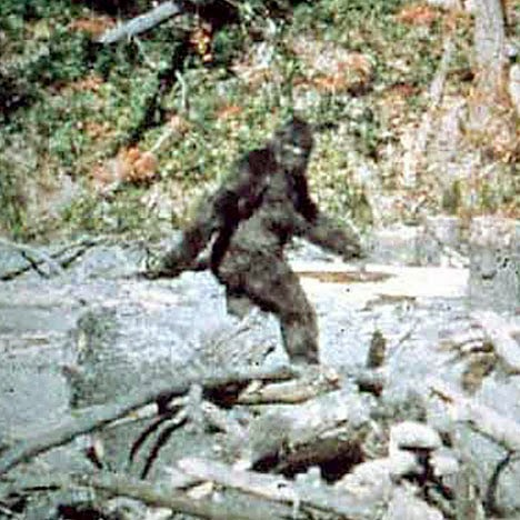 "Bigfoot Creature Captured On Video In Michigan Named As ""Murder Suspect"" By Russian Police"