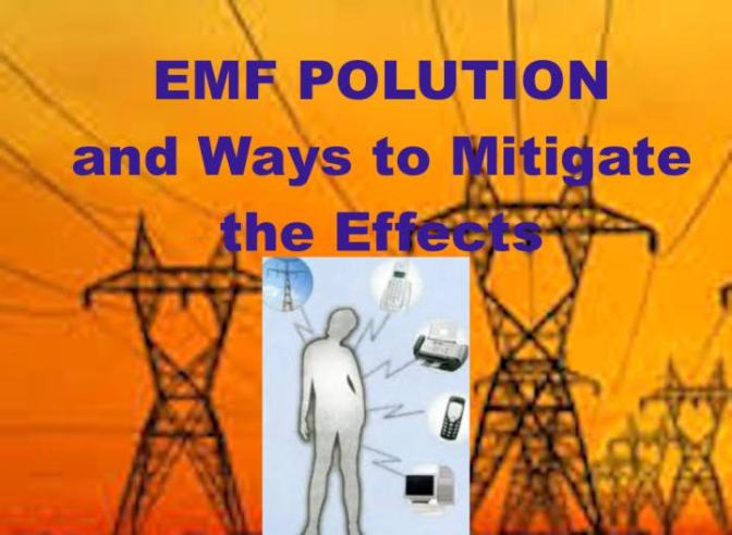 Preston James:  ElectroMagneticFrequency (EMF) Pollution and Ways to Mitigate the Effects — PROJECT CAMELOT PORTAL