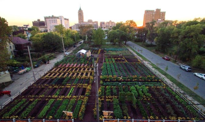 New sustainable agriculture development in Detroit feeds 2,000 households for free — David Icke latest headlines