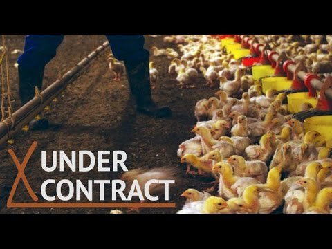 'Under Contract' Farm Freedom Documentary To Show In D.C. #StandWithFarmers — David Icke latest headlines