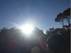 161102_kp_kauai_p1010211_arm_to_sun_crop_240_18