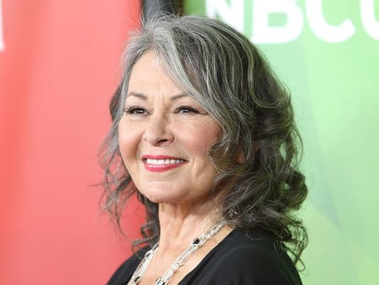 "Roseanne Barr: ""They Don't Get Trump Yet – They're Under Heavy MK Ultra Mind Control"" 
