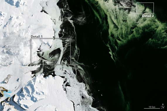 Mysterious Green Ice is Spreading Around Antarctica » The Event Chronicle