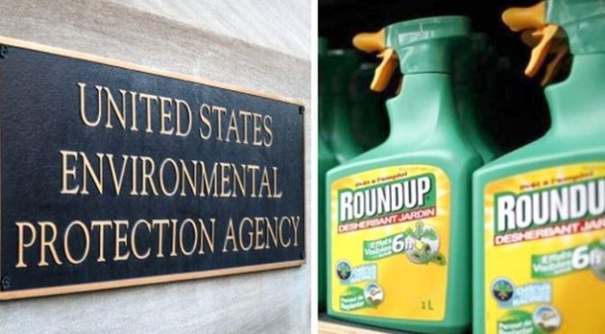 Court Docs Reveal Monsanto And EPA Colluded To Poison The Public – Your News Wire