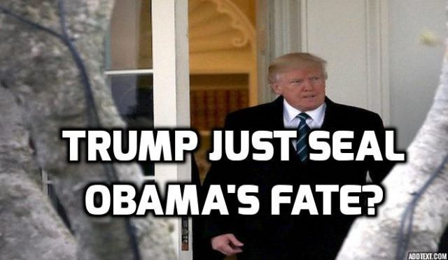 Trump Delivered Documented Evidence of Obama Wiretaps to House Panel