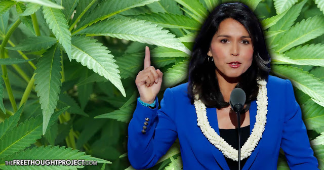 Stop 'Tearing Apart Families': Congresswoman Introduces Act to Decriminalize Pot — Nationally