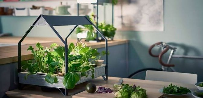 Ikea's Hydroponic System Allows You to Grow Vegetables All Year Without a Garden