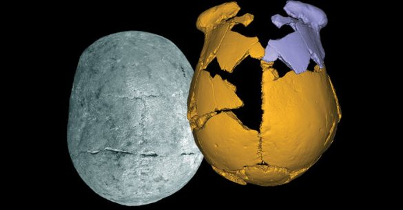 Mystery Skulls May Belong to Unknown Race of Ancient Humans | Stillness in the Storm