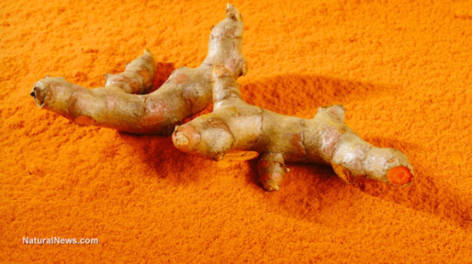 How turmeric kills cancer and how to optimize curcumin absorption | Galactic Connection