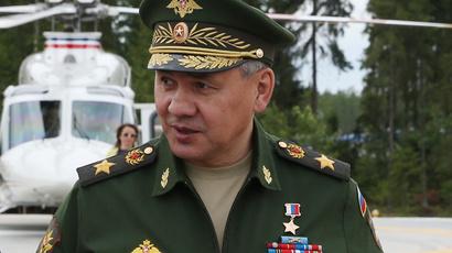 Defense Minister Sergey Shoigu (RIA Novosti / Ekaterina Shtukina)