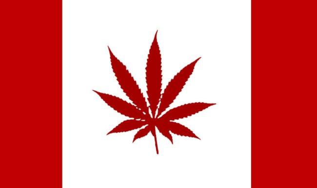Weed_Canada