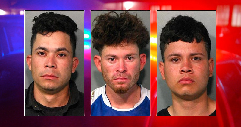 Three Illegal Immigrant MS-13 Gang Members Arrested for Attempted Murder in Long Island Machete Attack