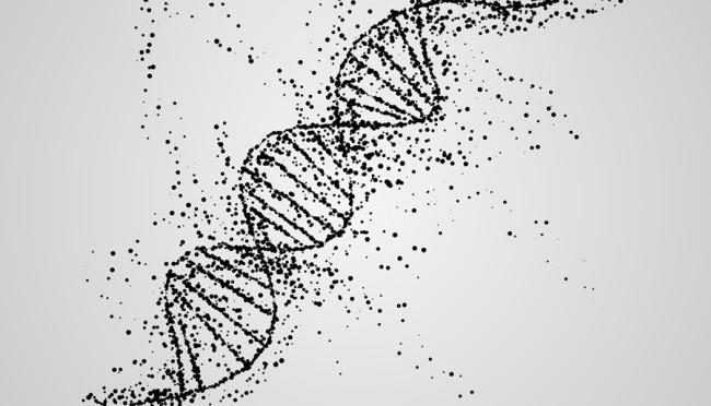 Ancient Ascension DNA